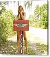 Mailbox 073 Canvas Print