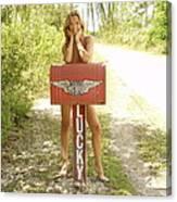 Mailbox 069 Canvas Print