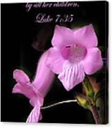 Luke 7 35 Pink Penstemon Flower Canvas Print