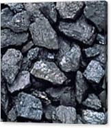 Lumps Of High-grade Anthracite Coal Canvas Print