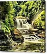 Lush Lower Falls Canvas Print