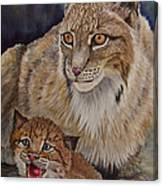 Lynx Mom And Baby Canvas Print