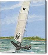 Mach2 Moth Canvas Print