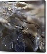 Snowflake Intimate Views Canvas Print