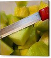 Macro Photo Of Knife Over Bowl Of Cut Musk Melon Canvas Print