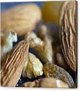 Macro Shots Of Various Dry Fruit Items Such As Almonds And Walnuts And Raisins Canvas Print