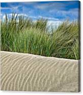 Mad River Dune Canvas Print
