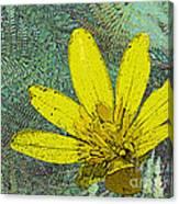 Magic Fern Flower 02 Canvas Print