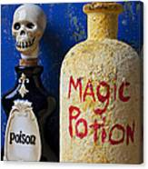 Magic Potion Canvas Print
