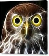 Magical Owl Canvas Print