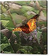 Magical Places For Butterflies Canvas Print