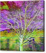 Magical Tree 4 Canvas Print