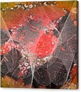 Magnification 4 Canvas Print