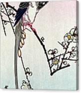 Magpie, 19th Century Canvas Print