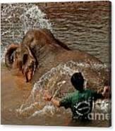 Bathing An Elephant Laos Canvas Print