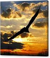 Majestic Sunrise Canvas Print