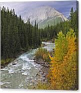 Maligne River Canvas Print
