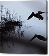 Mallard - Duck - Near The Tombigbee Canvas Print
