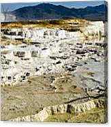 Mammoth Hot Springs Terraces Canvas Print