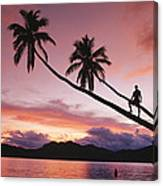 Man, Palm Trees, And Bather Silhouetted Canvas Print