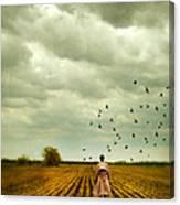 Man Walking In A Farm Field Canvas Print