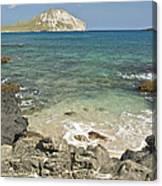 Manana Island View 0068 Canvas Print