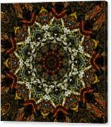 Mandala 111511 Canvas Print