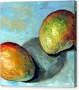 Mango's Canvas Print