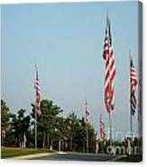 Many American Flags Canvas Print