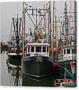 Many Fish Boats Canvas Print
