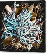 Maple Leaf And Laurel Canvas Print
