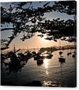 Marina At Sunrise Canvas Print
