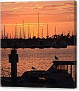 Marina Colors 4 Canvas Print