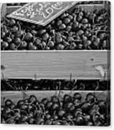 Market Cherries Canvas Print