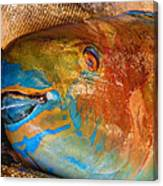 Market Fresh Fish Canvas Print