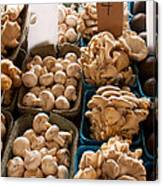 Market Mushrooms Canvas Print