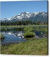marsh Flowing to Lake Tahoe Canvas Print