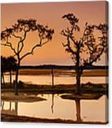 Marsh Morning Canvas Print