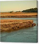 Marsh Of Pine Point Canvas Print