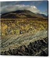 Marsh On The Landscape, Connemara Canvas Print
