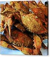 Maryland Steamed Crabs Canvas Print