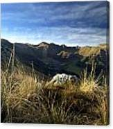 Massif Of Sancy In Auvergne. France Canvas Print