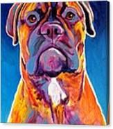Bullmastiff - Lexi Canvas Print