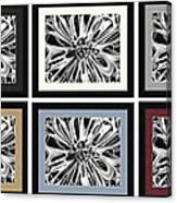 Matte Colors Canvas Print
