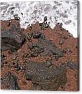 Mauis Red Shoreline Canvas Print