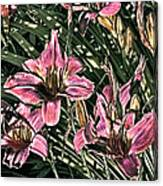 Meadow Sunrise Canvas Print