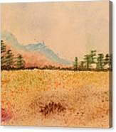 Meadow Wildflowers - Watercolor Canvas Print