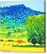 Meadows And The Cedar Breaks Canvas Print