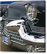 Mean Looking Grill Canvas Print