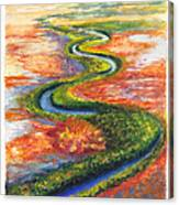 Meandering River In Northern Australian Channel Country Canvas Print
